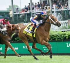 Evenly-Matched Group Set to Contest Rodeo Drive Stakes