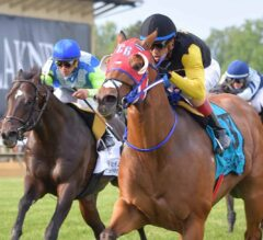 Completed Pass Breaks Through in Jim McKay Turf Sprint