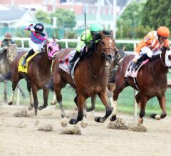 Honey Bunny Pays Dividends in Winning Colors