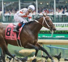 Mighty Mitole Champions Churchill Downs