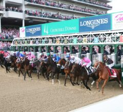 Gamine, Swiss Skydiver Shortest Odds in Kentucky Oaks Future Wager Pool 2