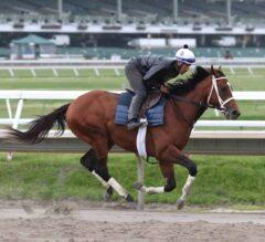 "Kentucky Derby ""Winner"" Maximum Security 1-2 Morning-Line Favorite for Pegasus Stakes"