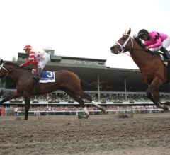 Maximum Security 8-5 Morning-Line Favorite for Haskell Invitational