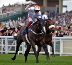 Advertise Rebounds Strongly in Commonwealth Cup