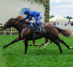 Blue Point Completes Historic Ascot Double in Diamond Jubilee