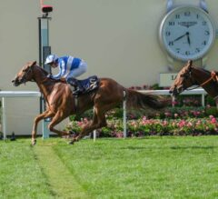 Cleonte Closes Royal Ascot Triumphantly in Queen Alexandra