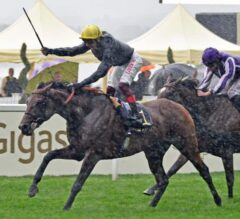 Crystal Ocean Crushes Prince of Wales's