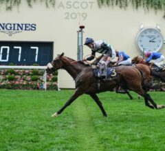 Dashing Willoughby Rallies for Queen's Vase Glory