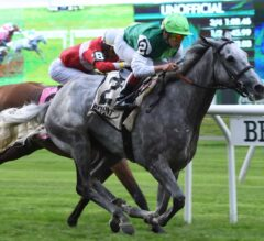 Significant Form Grinds Way to Intercontinental Score