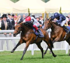 Star Catcher Shines Bright in Ribblesdale
