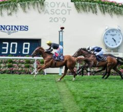 Favored Stradivarius Gives Dettori Fourth Straight in Gold Cup