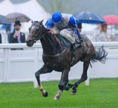 The Grand Visir Stays On For Ascot Score