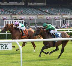 Racing Dudes Three Stars of the Week: Demarchelier Shines in Pennine Ridge
