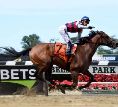 Saratoga Skinny: Guarana Can Clear Up 3-Year Old Filly Picture in Coaching Club America Oaks