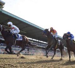Racing Dudes Three Stars of the Week: Belmont Super Card