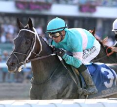 Midnight Bisou Makes it Look Easy in Molly Pitcher