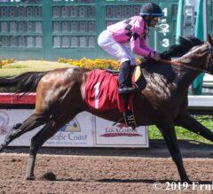 Game Winner Gallops Home in Los Al Derby