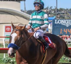 Catalina Cruiser Back to Defend Title in Pat O'Brien Stakes