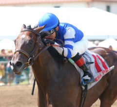 Iroquois Stakes Preview: Dennis' Moment Ready for Next Step