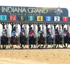 Harrah's Hoosier Park, Indiana Grand Welcome Spectators Back for Live Racing Beginning Saturday, July 4