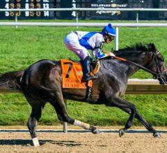 Elate Dominates Delaware Handicap