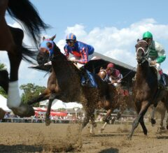 Awesome Debate Seeks First Stakes Score In Union Avenue