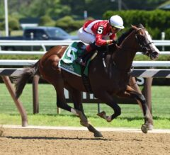 Juveniles Ready to Step Up in Claiborne Breeders' Futurity