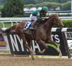 Travers Stakes Preview: 150th Edition of the Mid-Summer Derby