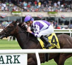 Concrete Rose Goes for Second Leg of Turf Tiara in Friday's $750,000 Saratoga Oaks
