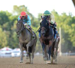 Golden Award Wows in Shuvee Stakes