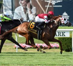 Saratoga Derby Preview: Henley's Joy Back for More