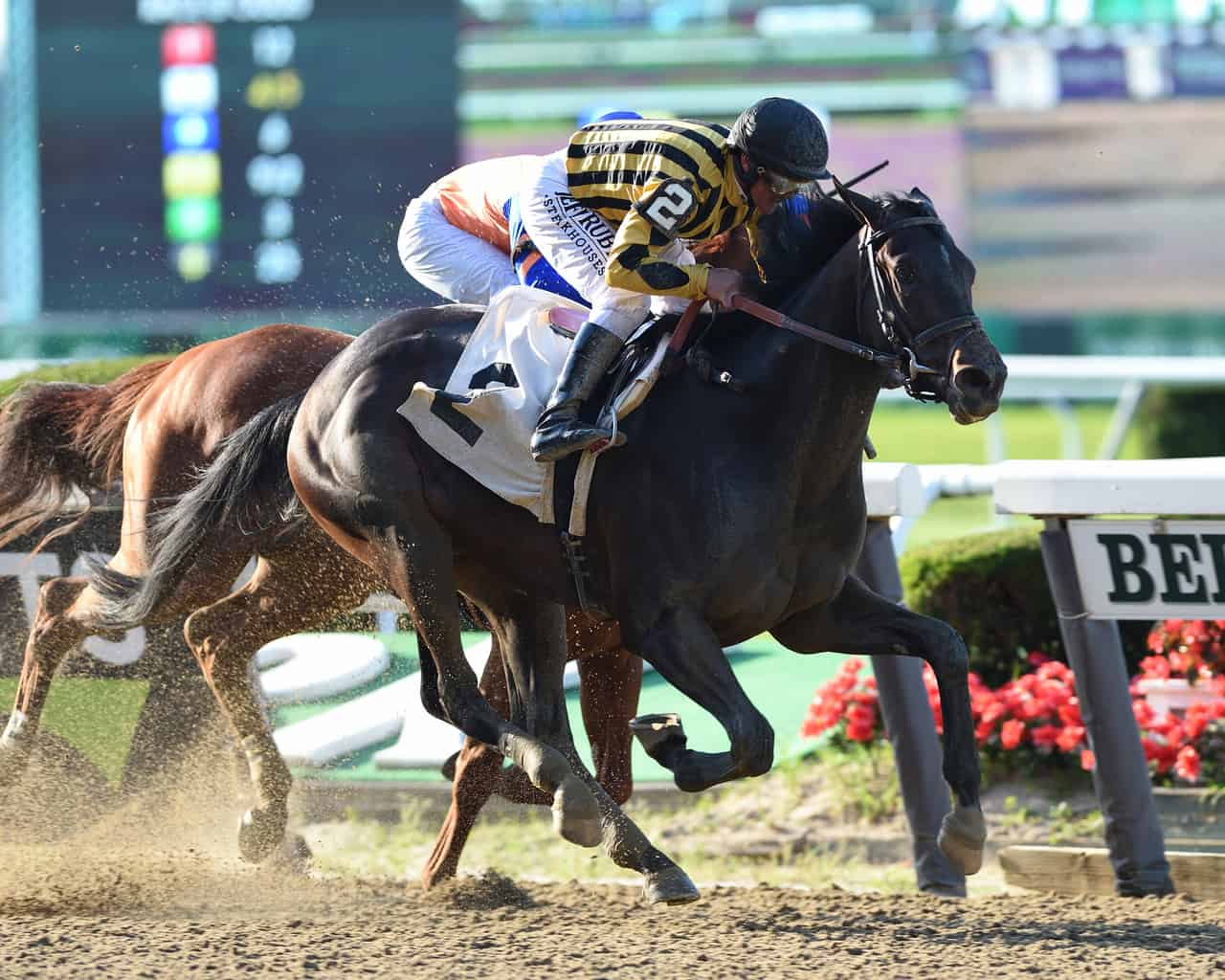 Saratoga Skinny: Curlin Stakes Demands Respect