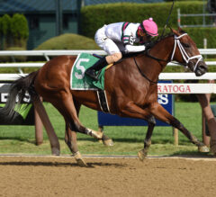 Minit to Stardom Powers to Honorable Miss Victory