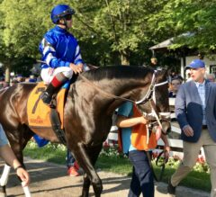 Alydar Preview: Endorsed Returns to the Spa