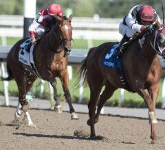 Alnilah Takes Seaway Stakes in a Summer Sunday Upset