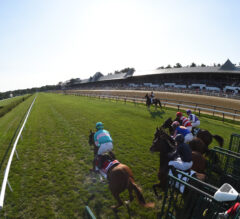 Somo Bombs: Del Mar and Saratoga Picks for August 10, 2019