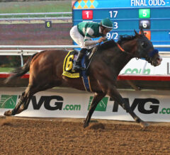Higher Power Reaches Pacific Classic Glory