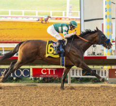 Racing Dudes Three Stars of the Week: Pacific Classic Standout