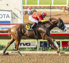 Pennsylvania Derby Preview: Shortened Field Ready
