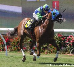 Clockers' Corner Preview: Rail Draw Could Give Mr Vargas The Edge