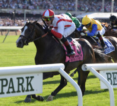 Arlington Million Preview: Bricks And Mortar Ready to Roll
