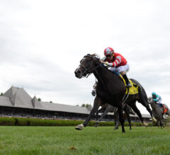 Fighting Seabee Up For The Challenge In Fasig-Tipton Lure