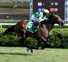 Kimari Ready for Indian Summer Stakes