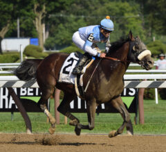 Tom's d'Etat Strolls Home Strong in Alydar