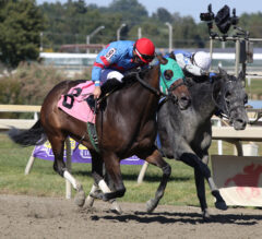 Trace of Grace Leads 1-2 Finish for Houghton in Plum Pretty