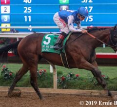 2019 Breeders' Cup Predictions #4: Action Heats Up this Weekend