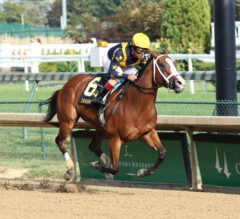 Covfefe vs. Come Dancing Highlights Filly and Mare Sprint