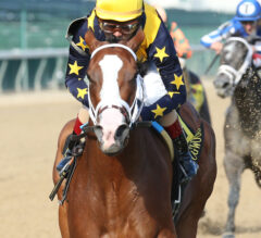 Covfefe Breeders' Cup-Bound After Dominating Dogwood