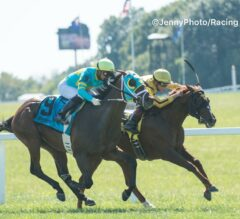 Cambria Conquers Colts in Juvenile Turf Sprint
