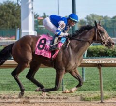 Fountain of Youth of Preview: Dennis' Moment Looks to Rebound from Breeders' Cup Disaster
